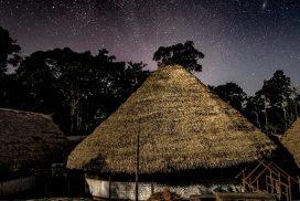 AF ayahuasca camp 272x182