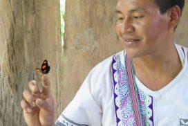 AF ayahuasca curandero 272x182