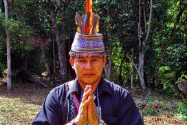 AF ayahuasca curandero shipibo don enrique 01 272x182